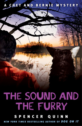 The-Sound-and-the-Furry-cover